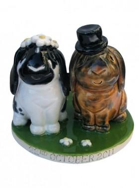 Rabbit Bride And Groom