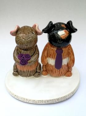 Guinea Pig Bride And Groom